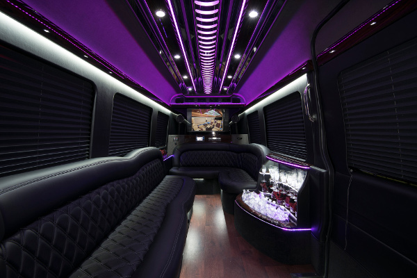 12 Passenger Party Buses Akron